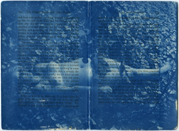 "From series ""Type Cyan,"" cyanotype printed directly on antique book paper"